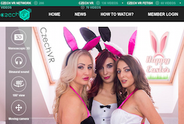 Definitely the top pay xxx site to access class-A adult videos
